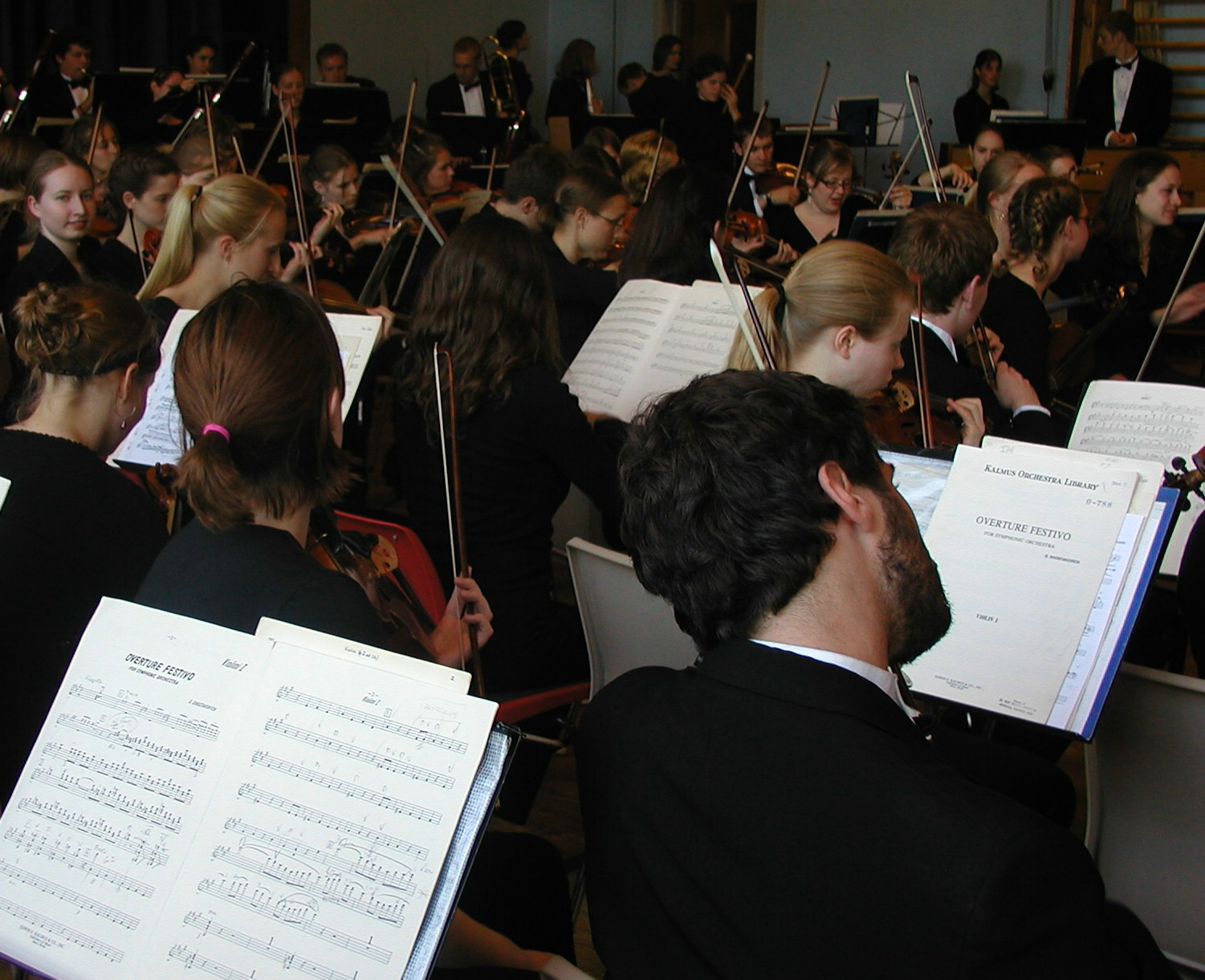Snåsa orchestra strings